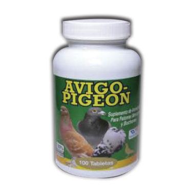 Avigo-Pigeon
